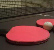 Jaké jsou rozdíly mezi ping pongem a stolním tenisem?